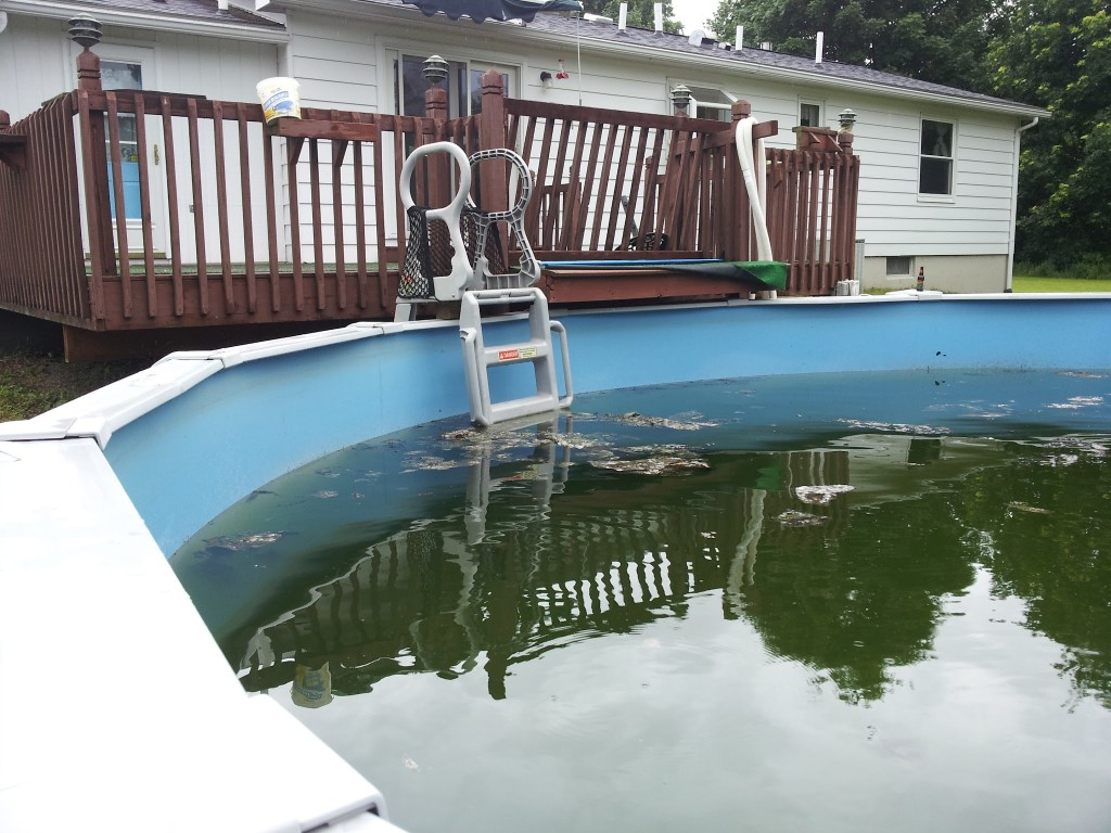 Dirty Above Ground Pool